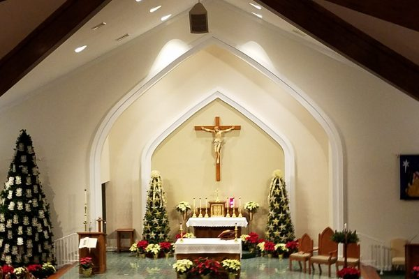 PBOC current information:   – Important Parish information can be found here – Parish  Mass  schedule & Covid update included